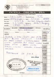 Déva-2010.03.28.Smed Palanka
