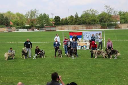 I. Grand Od Stankovica 2x Világgyőztes